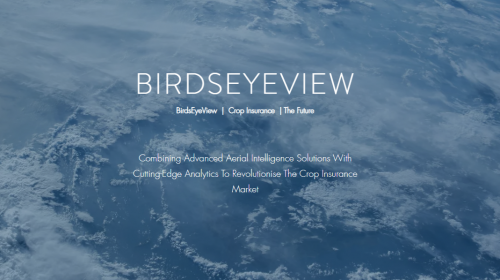 BirdsEyeView  Technologies